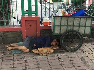Bức ảnh người chủ nghèo cùng chú chó lót bao tải ngủ bên đường khiến dân mạng nghẹn ngào