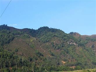 Nghệ An: Người đàn ông mất tích bí ẩn khi đi lên núi hái cây làm chổi