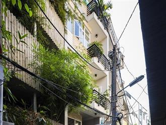 'Nhà tre' như rừng cây trong hẻm Sài Gòn, vừa tắm vừa nghe chim hót