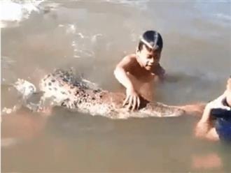 Nhóm trẻ em bơi lội, chơi đùa cùng cá sấu dưới nước trong lúc ông bố vẫn thản nhiên quay phim khiến nhiều người rùng mình