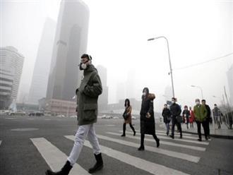 Ô nhiễm không khí từng làm gần 1,6 triệu người chết sớm, Trung Quốc đã xử lý thế nào?