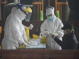 Phát hiện thêm 9 ca nhiễm Covid-19, Việt Nam có tổng cộng 459 ca