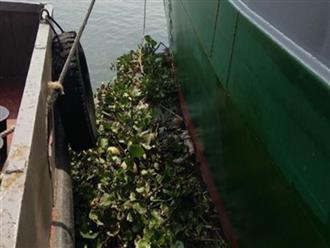 Phát hiện thi thể người phụ nữ đang phân huỷ trên sông Sài Gòn