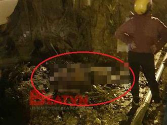 Hà Nội: Sau khi uống rượu, người đàn ông ra gốc cây đa tẩm xăng tự thiêu