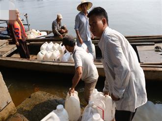 """Sài Gòn: Ngày 23 tháng Chạp, ông Táo """"chưa kịp cưỡi về trời"""" thì cá đã bị chích điện"""