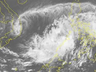 TP.HCM yêu cầu ứng phó với áp thấp nhiệt đới có thể mạnh lên thành bão