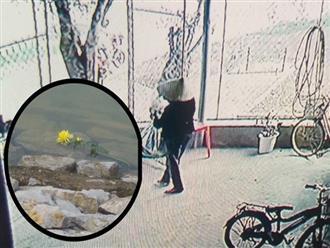 """Vụ bà nhẫn tâm sát hại cháu ở Nghệ An: Bí ẩn """"hoa cúng"""" nghi can mang theo ra hiện trường"""