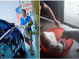 """Vụ người đàn ông đi xế hộp bế trộm chó: Nguyên nhân là """"yêu động vật và say rượu"""", đã nhờ người đem trả lại cho khổ chủ"""