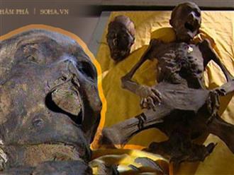 Ám ảnh thi thể bị chôn sống trong lăng mộ cổ: Mắt trợn ngược, miệng há to, tay chân giãy giụa