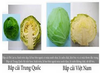 20 cách phân biệt thực phẩm Trung Quốc và Việt Nam, biết để bảo vệ sức khỏe cả gia đình