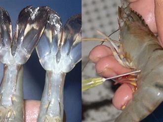 3 đặc điểm dễ thấy nhất của tôm đã bơm hóa chất, phải tỉnh táo kẻo mang chất độc về nhà