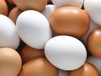 Đây chính là cách bảo quản trứng gà, trứng vịt ăn dần suốt vài tháng mà chẳn lo bị hỏng không cần tủ lạnh