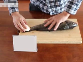 Đánh vảy cá bằng củ cải tưởng trò đùa ai ngờ vảy sạch trơn không còn một cái