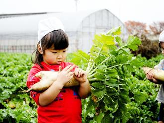 Thì ra đây là 4 bí quyết người Nhật áp dụng để rút ngắn thời gian dạy trẻ trưởng thành và suy nghĩ chín chắn
