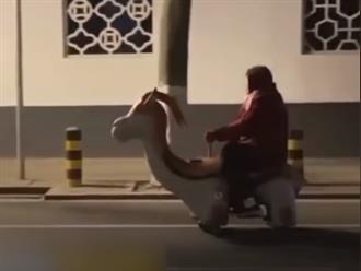 Hồn nhiên 'cưỡi ngựa' đồ chơi bon bon trên đường, cụ bà 76 tuổi bị CSGT 'hỏi thăm' ngay và luôn