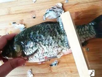 4 mẹo đánh vảy cá vừa sạch lại an toàn chẳng lo bị đứt tay