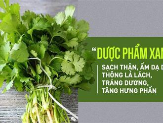 Loại rau thơm có thể chữa bệnh thận, gan và nội tạng bán đầy ngoài chợ