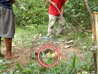 Bố rủ con trai mang theo 2 con vịt và cái lồng chim vào rừng rồi bỏ đi, hôm sau quay lại thì thấy điều không thể tin nổi