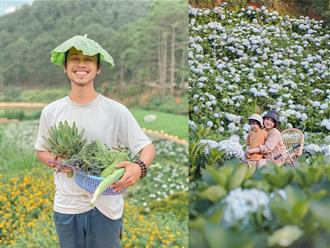 Bỏ phố về Đà Lạt: Cặp vợ chồng trẻ 'trồng rau chăm hoa', sống cuộc sống điền viên nhiều người mơ ước