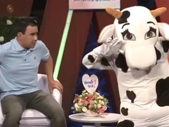 Bạn muốn hẹn hò: Màn xuất hiện của 'chú bò sữa' trên sân khấu khiến MC Quyền Linh hốt hoảng