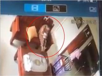 Xuất hiện clip người giúp việc giật lắc bé 3 tháng tuổi như đồ chơi ở Hà Tĩnh