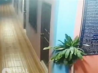 Chung cư 3 tầng bất ngờ đổ sập, nát bấy như đồ chơi, clip do camera ghi lại khiến người xem thót tim