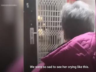 Bác sĩ trẻ tự cách ly vì nghi nhiễm virus corona, mẹ già khóc nghẹn cố gửi thức ăn cho con