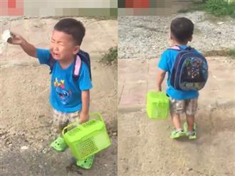 Ba lần quay đầu trong nước mắt, cậu bé 'bất lực' đi vào trường mẫu giáo khiến người xem cười ngất