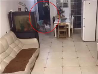 Dặn chó cưng ở nhà nhận hàng của shipper, chủ kiểm tra camera thì phát hiện cảnh tượng khó tin