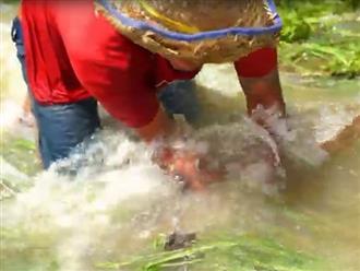 Đặt lưới trên dòng suối, người đàn ông cứ tưởng hốt được toàn rác ai ngờ phát hiện điều kỳ diệu
