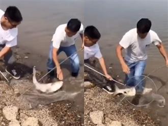 Hai thanh niên bắt được cá siêu to khổng lồ và cái kết 'miếng ăn đến miệng mà vẫn rơi' khiến ai nấy cười bò