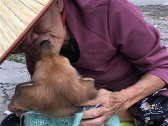 Cụ già hôn tạm biệt chú chó nhỏ trên vỉa hè cùng câu chuyện đau lòng khiến người đọc không cầm được nước mắt