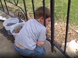 Khó tin bà mẹ thích thú khi con trai bị kẹt đầu vào song sắt