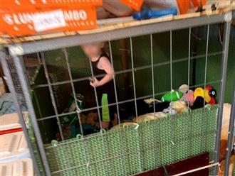 Sốc: Bé trai 18 tháng tuổi bị mẹ và người thân nhốt trong chuồng chó bẩn thỉu với hàng trăm con vật khác từ rắn, chuột đến thỏ, gà