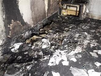 Thắp hàng trăm cây nến cầu hôn bạn gái, bất ngờ gây hỏa hoạn thiêu rụi nhà