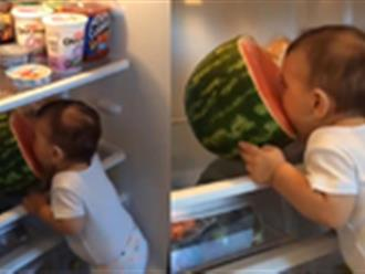 Cô bé bất lực khi ăn trộm dưa hấu trong tủ lạnh