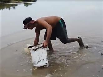Xách xô đi bới lớp bùn đất dọc bờ biển, người đàn ông phát hiện cả một 'kho báu' siêu to khổng lồ
