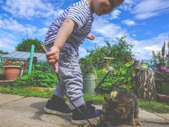 5 lợi ích tuyệt vời khi cho trẻ nuôi thú cưng