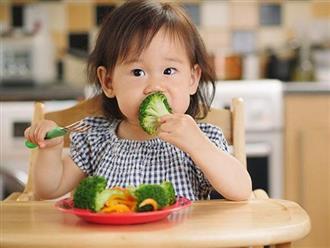 5 nguyên tắc trong ăn uống giúp trẻ khỏe mạnh, mau lớn, ít ốm vặt