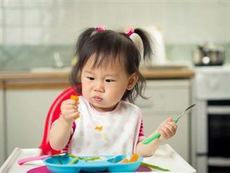 5 thực phẩm bổ dưỡng phòng bệnh thận: Mẹ thông thái đừng quên bổ sung vào thực đơn cho con mỗi ngày