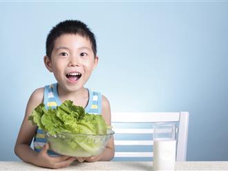 Bài thuốc cho trẻ suy dinh dưỡng