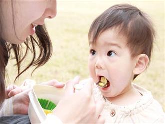 Bánh ăn dặm cho bé theo từng tháng tuổi mẹ tự làm được tại nhà