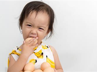 Cách chế biến và cho con ăn trứng đúng cách ở từng độ tuổi khác nhau các mẹ rất nên nắm rõ