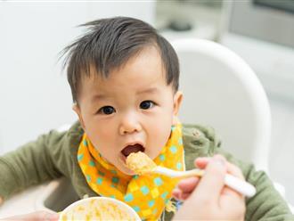 Cho bé ăn dặm đúng cách để bé phát triển tốt nhất