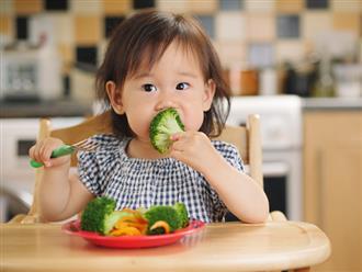 Chuyên gia hướng dẫn mẹ cách phân bổ nhóm thực phẩm dinh dưỡng cho trẻ 2-6 tuổi
