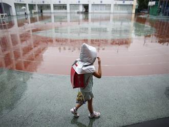Con 7 tuổi đi học bị trường trả về vì suốt ngày khóc đòi bú mẹ