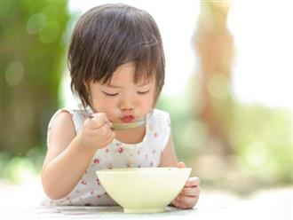 Con bạn đã có đủ chất xơ cần thiết mỗi ngày?