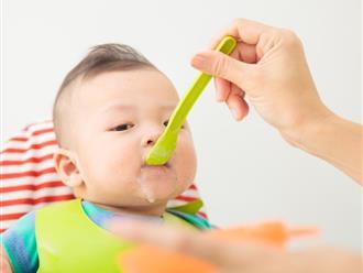 Cuối tuần, mẹ tự tay nấu 3 món cháo ăn dặm giàu dinh dưỡng cho bé dưới 1 tuổi