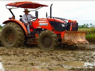 Dùng máy xúc xới đất để chuẩn bị trồng lúa, người dân phát hiện cả trăm ký cá lóc 'to bằng bắp tay'