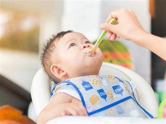 Gợi ý thực đơn cho bé 6 tháng bắt đầu ăn dặm hiệu quả, cân nặng tăng vù vù